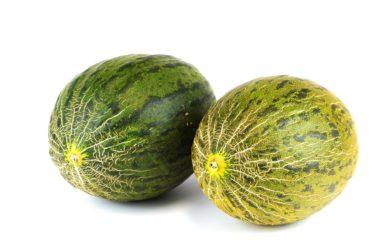 Bild på två meloner som får representera bröst